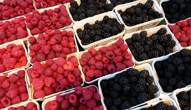 raspberries-2676808_640.jpg